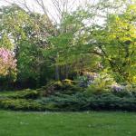 Garten im Talentegarten